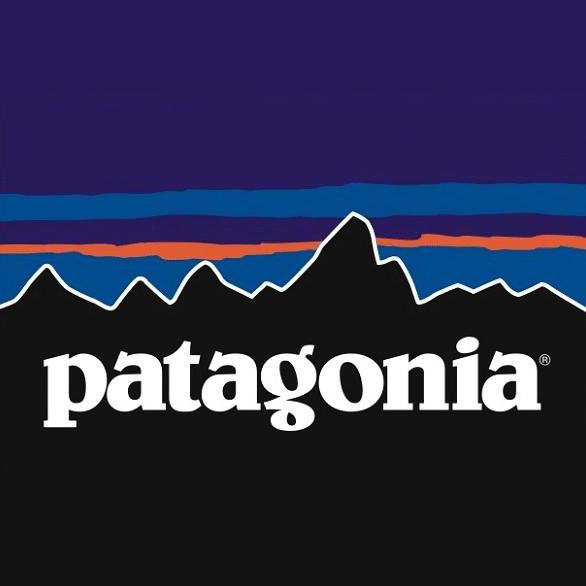 patagonia demanda