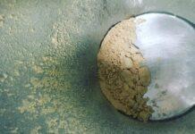 Arveja amarilla, poroto mungo y garbanzo fueron algunas de las legumbres que se utilizaron para desarrollar concentrados y aislados proteicos. Actualmente, están trabajando en el aislamiento de proteína de arroz.
